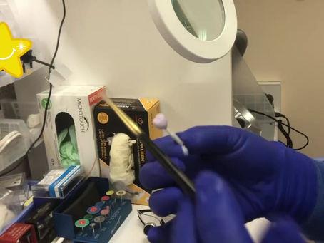 ALFIE Labs: Hand Glazing