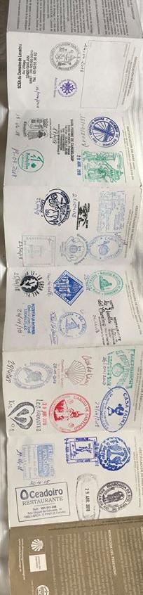 day 17 passport