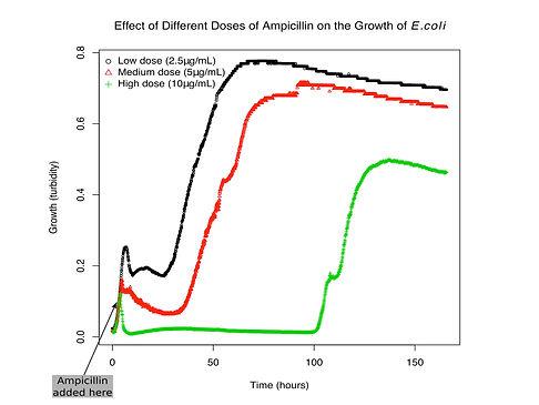 Antimicrobial growth curve.jpg