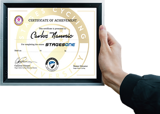 one certificate.png