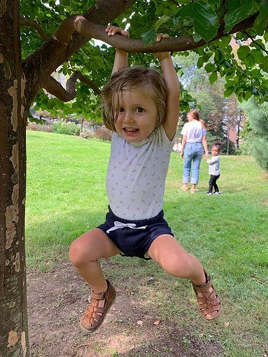 Camille in tree.jpg