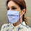 Thumbnail: ANTIVIRAL Mask with Vegan Leather Strap -Folded