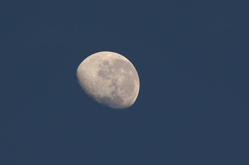 Lunar #1