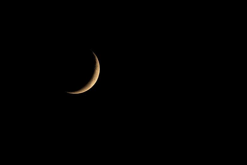 Lunar #2