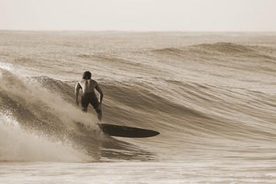 Surf Gallery 2