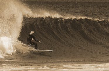 Surf Gallery 31