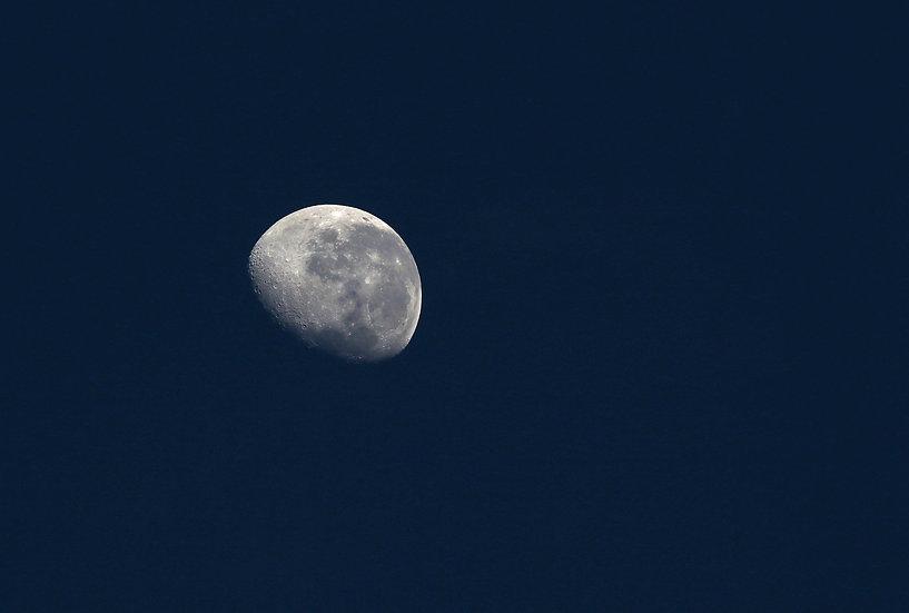 Lunar # 9