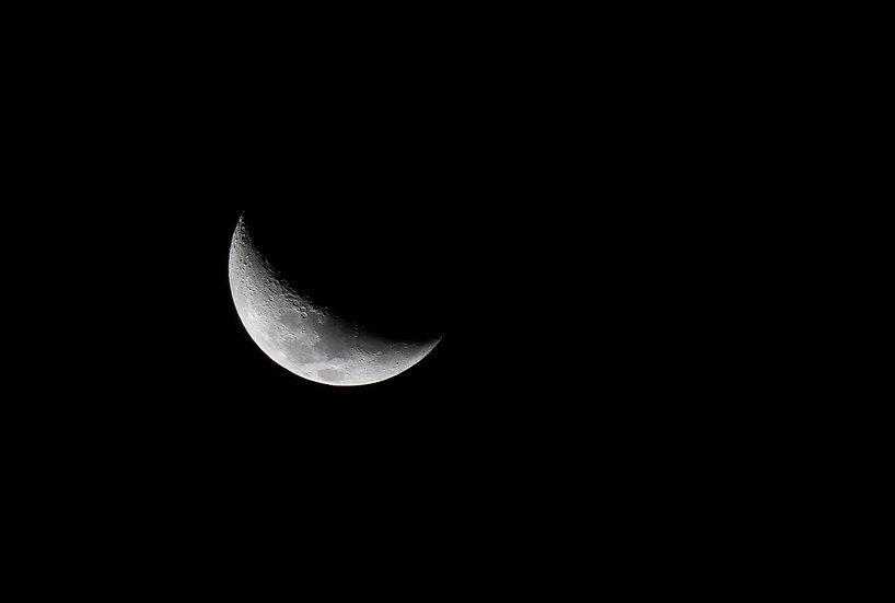 Lunar #7