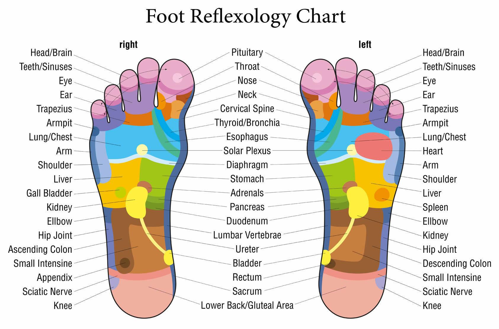 Reflexology 1 hour