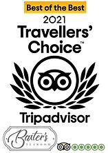 traveller.jpg