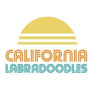 california doodles logo retro.jpg