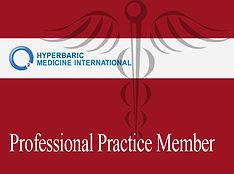 Professional Practice Member