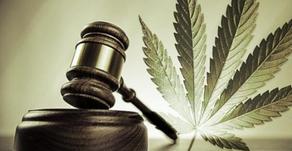 El uso lúdico de la marihuana en México