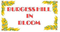 Burgesshillinbloom logo