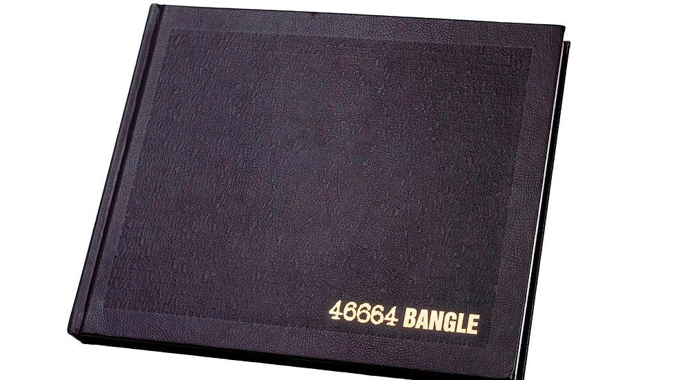 46664 Mandela bog