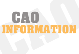 CAO Virtual Session for Parents