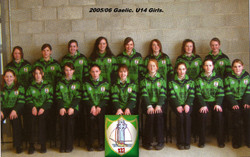 Sports Teams8