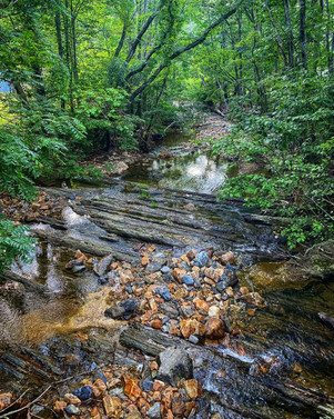 Little Dry Wilderness, Virginia