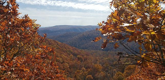 Arkansas 4.jpg