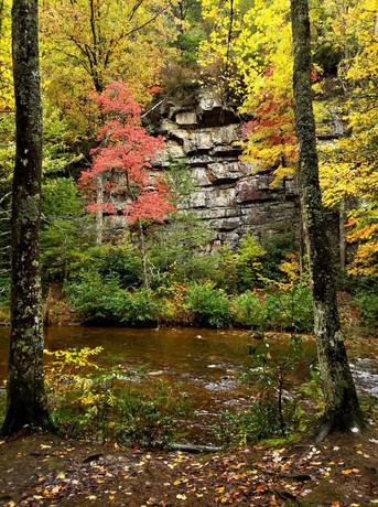 Pond Mountain Wilderness, Tennessee