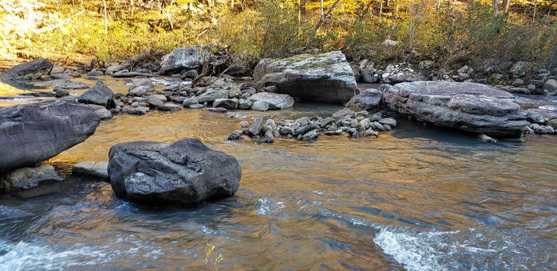 Hurricane Creek Wilderness, Arkansas