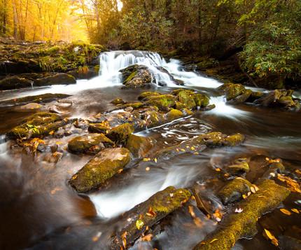 Citico Creek Wilderness, Tennessee