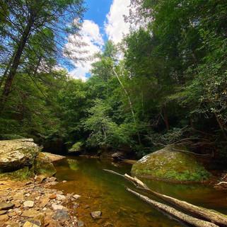 Clifty Wilderness, Kentucky