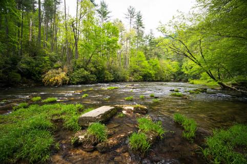 Ellicott Rock WIlderness, South Carolina