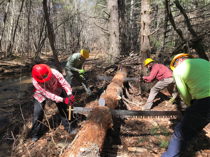 Local Trail Volunteers Sharpen their Skills with Crosscut Saws and Axes