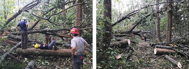 at_hurricane_damage_3-1024x376.jpg