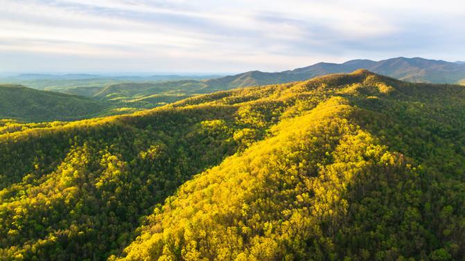 Upper Bald River Wilderness, Tennessee
