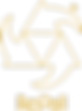 Repall Logo in gold.png