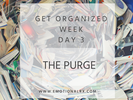 "National ""Get Organized Week"" Day 3 The Purge"