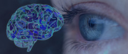 What-is-Neuro-Ophthalmology-Banner