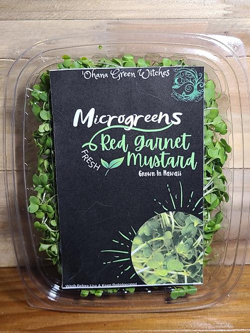 MG Mustard
