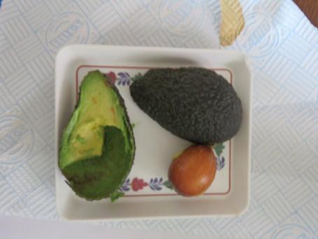 Avocado's : onbekend en onbemind ? Gezond of gevaarlijk?