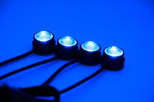 Eagle Eye LED Accent light