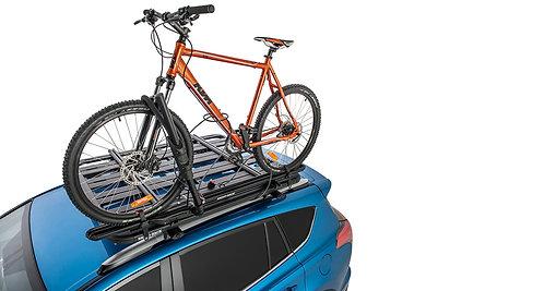 Hybrid Bike Carrier