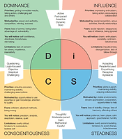 Everything+DiSC+Workplace+Style+Overview