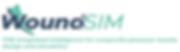 Logo-WoundSim-2.PNG
