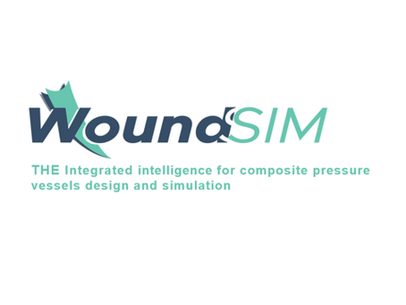 Introduction To WoundSim