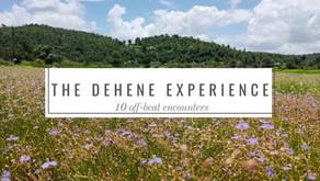 The Dehene Experience: 10 offbeat encounters