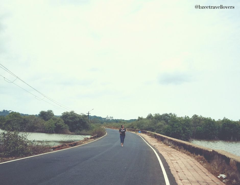 Scenic Divar Island Goa
