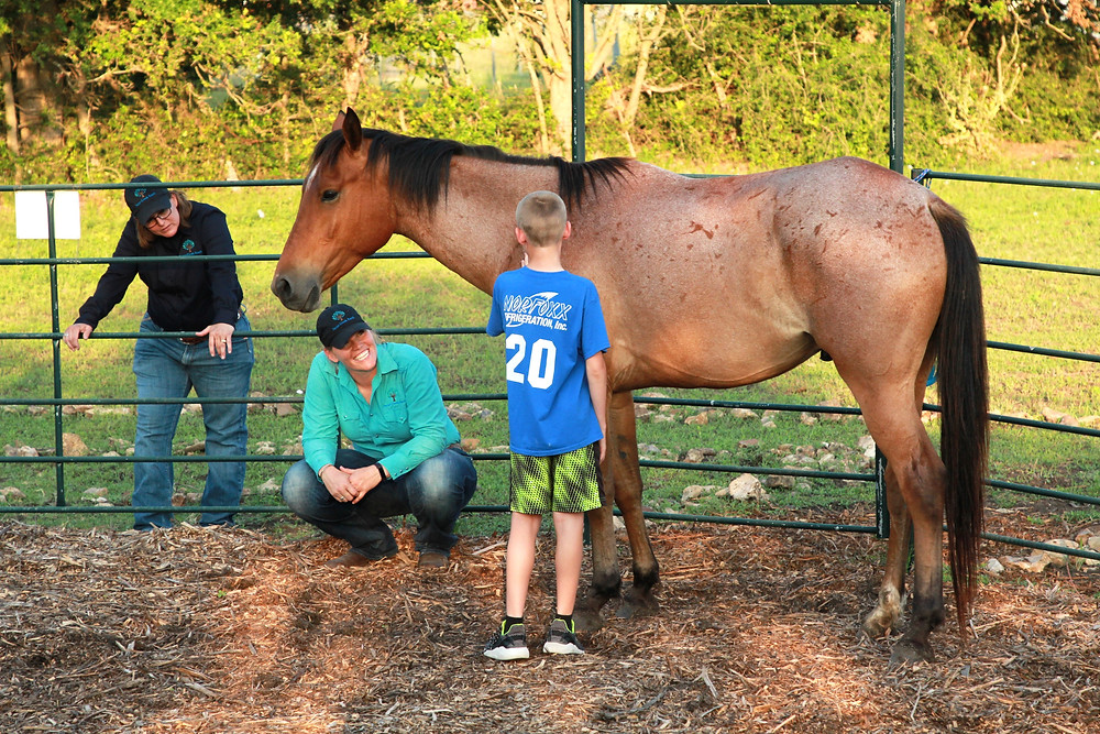 TF-EAP therapy team and horse with client
