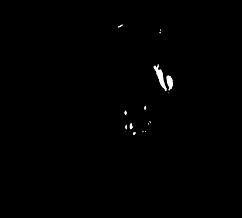 000YogaBodyFX_Logo.png