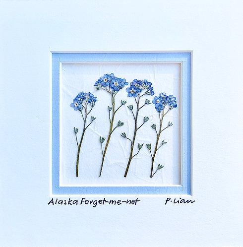 Matted Alaska Forget-me-nots with Easel set
