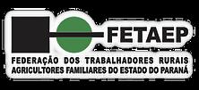 FETAEP.png