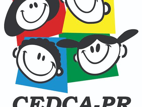 Criai apresenta balanço dos trabalhos e metas para 2021 em reunião do Cedca