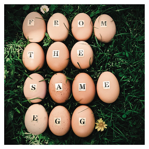 From The Same Egg- EP
