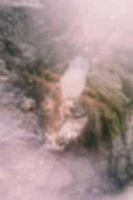 Negative0-37-36A(1).jpg